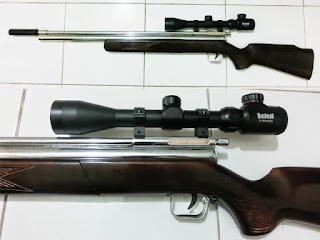 senapan angin sharp apache long barrel
