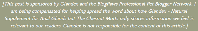 [This post is sponsored by Glandex and the BlogPaws Professional Pet Blogger Network. I am being compensated for helping spread the word about how Glandex – Natural Supplement for Anal Glands but The Chesnut Mutts only shares information we feel is relevant to our readers. Glandex is not responsible for the content of this article.]