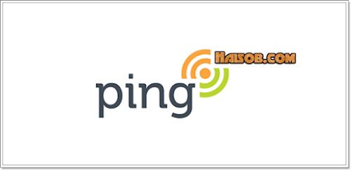 Cara melakukan Ping Blog agar cepat terindex Google