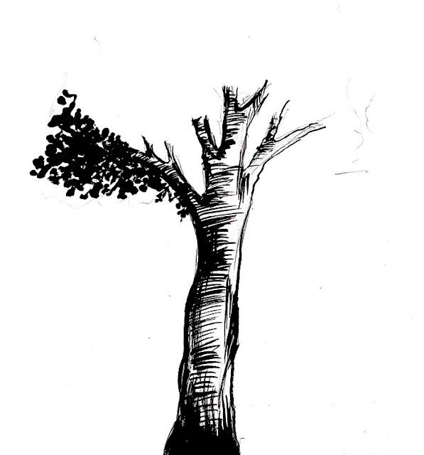 Contoh Cara menggambar pohon untuk psikotes