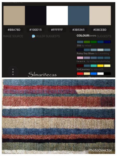 paleta de colores de mi alfombra