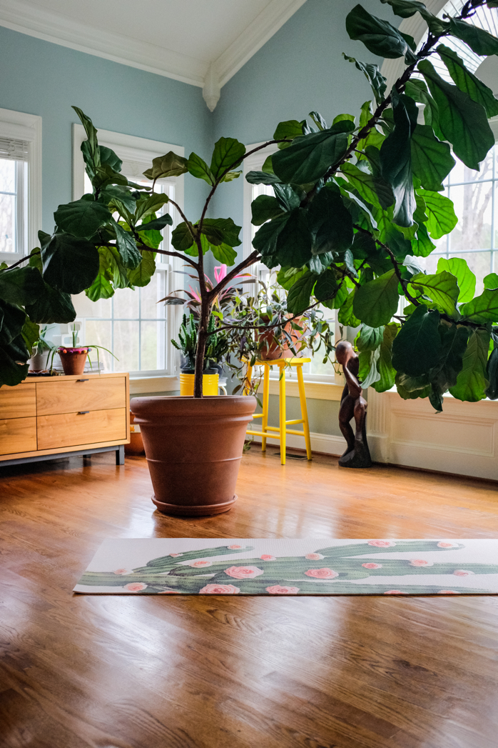 Yoga and Plants- yes please! -design addict mom