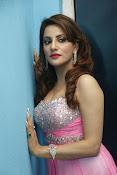 Preeti Soni sizzling photos gallery-thumbnail-7