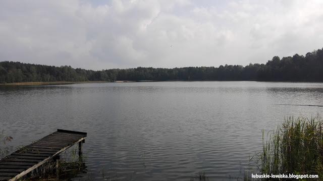 Jezioro Moczydło - Osiecznica