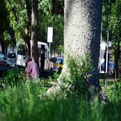 Violência no parque mais querido dos portoalegrenses