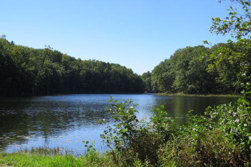 Dunham Lake
