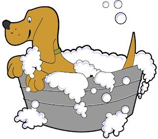 El baño del perrito destella magia.