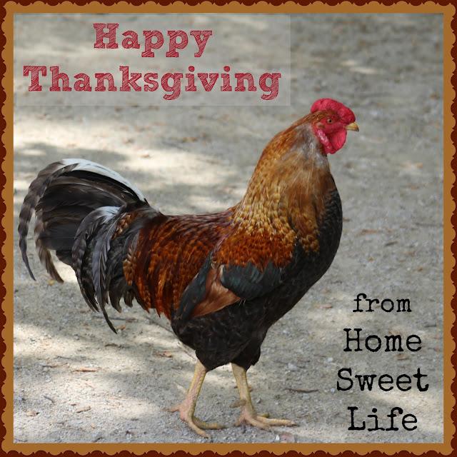 Thanksgiving, 2018, thankfulness