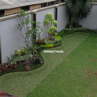 kami tukang taman minimalis menjual rumput gajah mini dengan harga paling murah