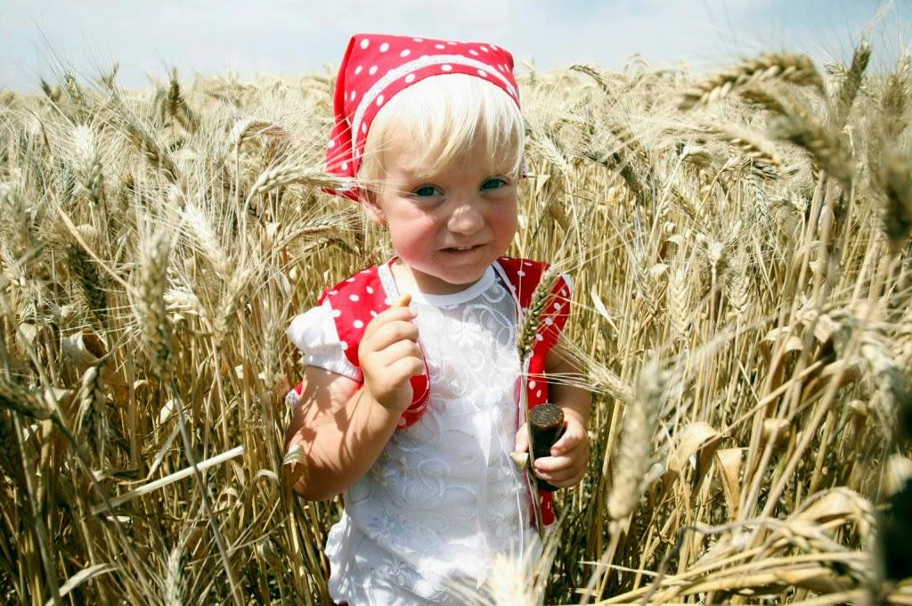 Kányádi Sándor, Nagyanyó-kenyér, vers, költemény, aratás, liszt, malom, házikenyér,