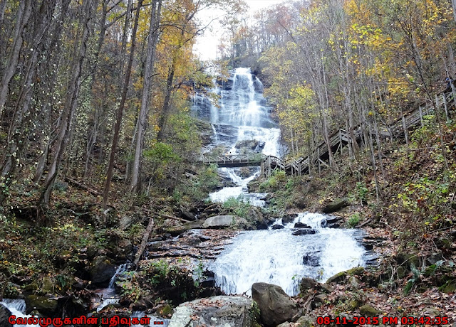 Amicalola Falls - Southeast's tallest cascading waterfall