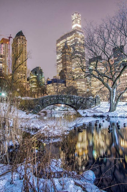 New York, Central Park under the snow