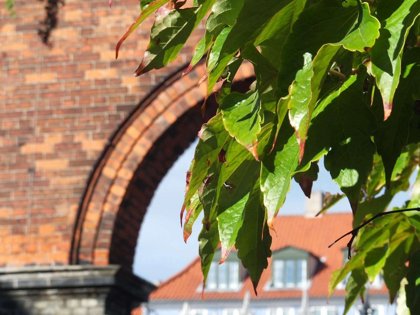 copenhagen-autumn コペンハーゲンの秋