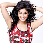 Pooja Gupta hot hd wallpapers