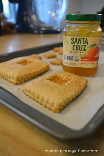 Santa Cruz Organic Mango Fruit Spread