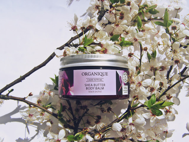 Organique balsam z masłem shea czarna orchidea