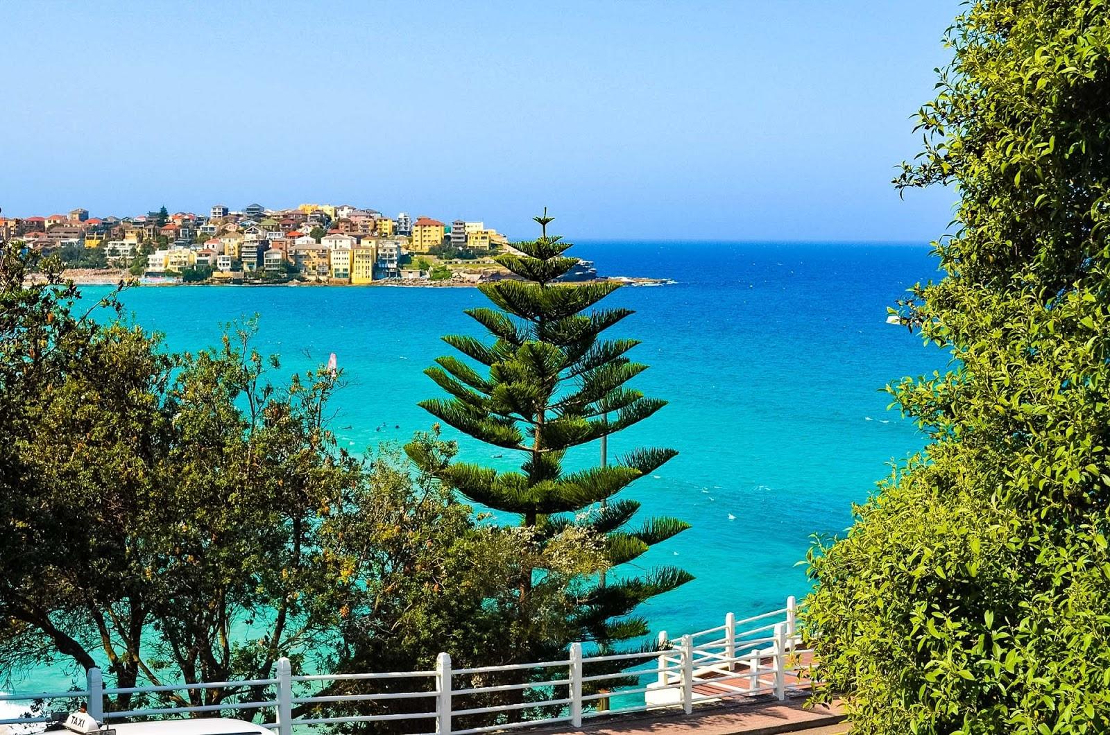 views over bondi beach