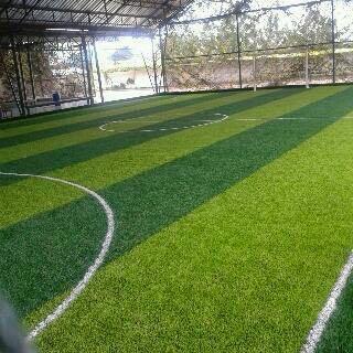 tukang rumput sintetis lapangan futsal