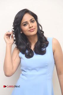 Actress Nandita Swetha Pictures at Ekkadiki Pothavu Chinnavada Teaser Launch 0002