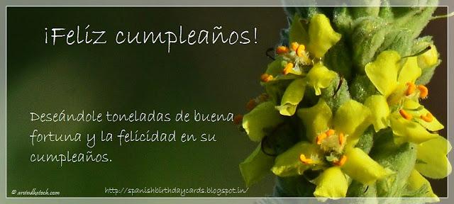 Tarjeta de Cumpleaños, Cumpleaños, fortuna, Spanish, Birthday Card