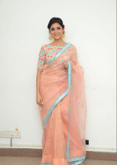 Priyanka Bhardwaj in Organza Net Saree at Mister 420 Press Meet