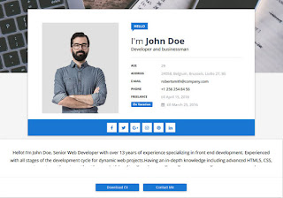 Sora CV Blogger Template