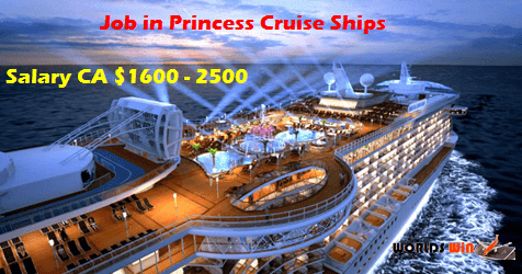 Princess Cruise Ships Need Workers Submit Now Worlds Win Job Fair - Cruise ship worker blog