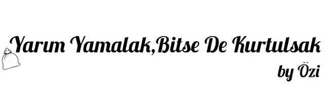 bitse-de-kurtulsak-by-ozi