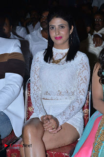 Actress Pragya Stills at Vangaveeti Audio Launch  0061.jpg