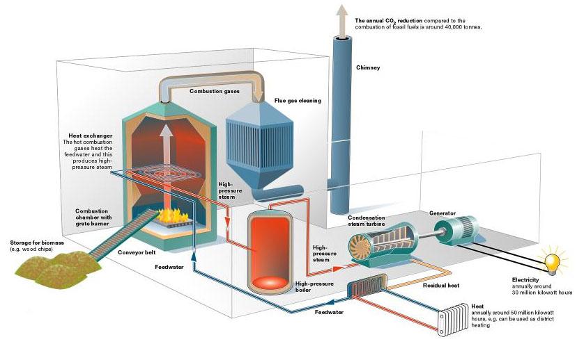 biomass fuel - photo #12