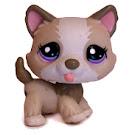 Littlest Pet Shop Pet Pairs Husky (#1817) Pet
