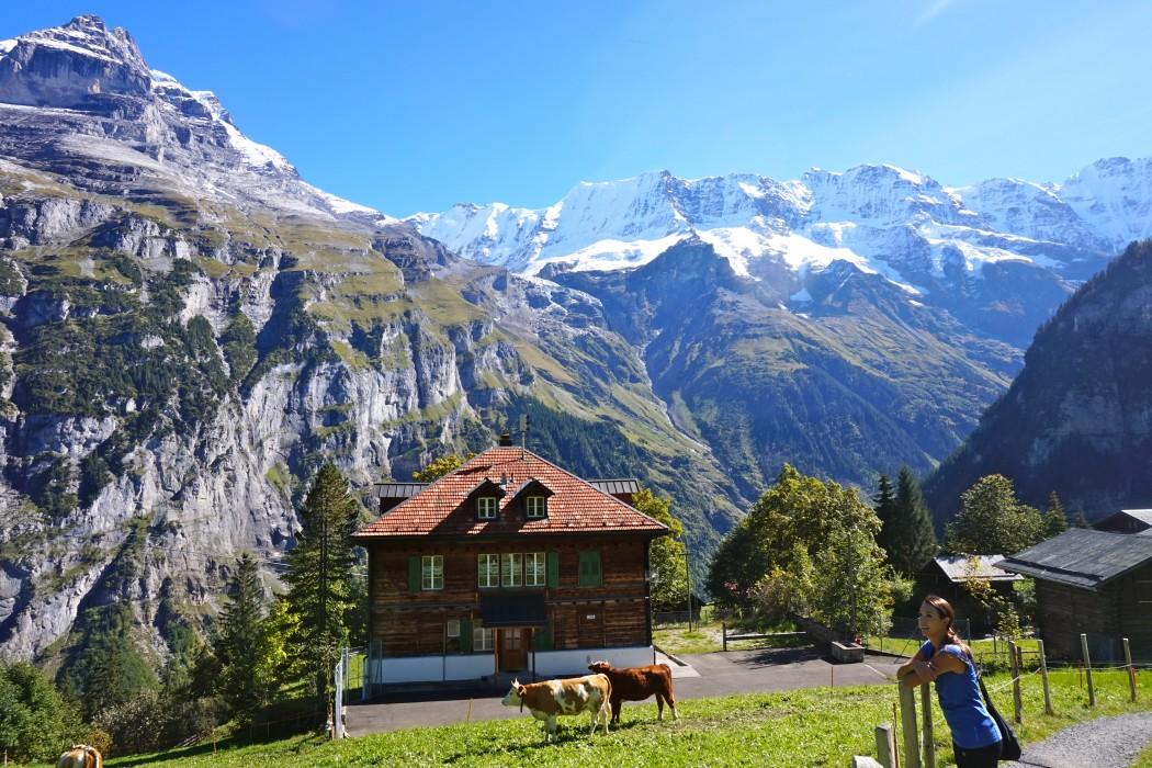 сегодня прикольные картинки про поездку в швейцарию версия трактует
