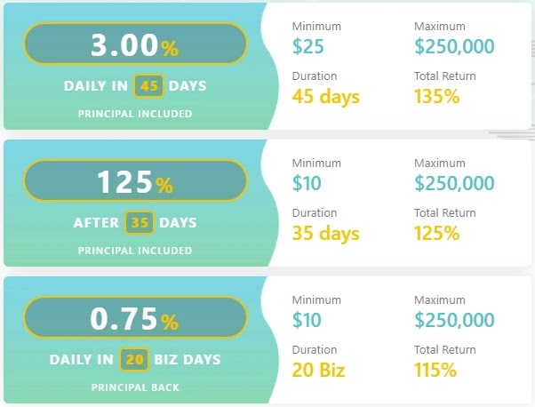 Инвестиционные планы BitNetworkers