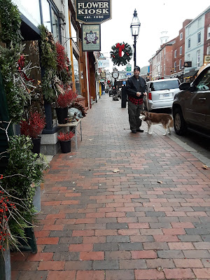 Portsmouth New Hampshire is a quaint New England town that is very dog friendly.  Several Dog friendly shops allow dogs inside.  Haven Park is a dog friendly park on Pleasant St.