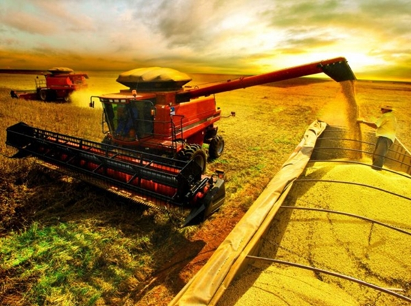 Agronegócio diz que, sem herbicida, não há safra no País