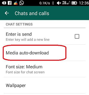pengaturan media auto download wa