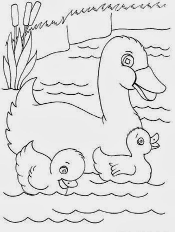 Colours Drawing Wallpaper Best Mom Duck Drawing Cartoon