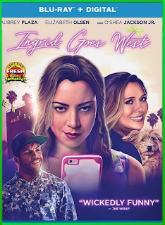 Ingrid Goes West (2017) | DVDRip Latino HD GDrive 1 Link