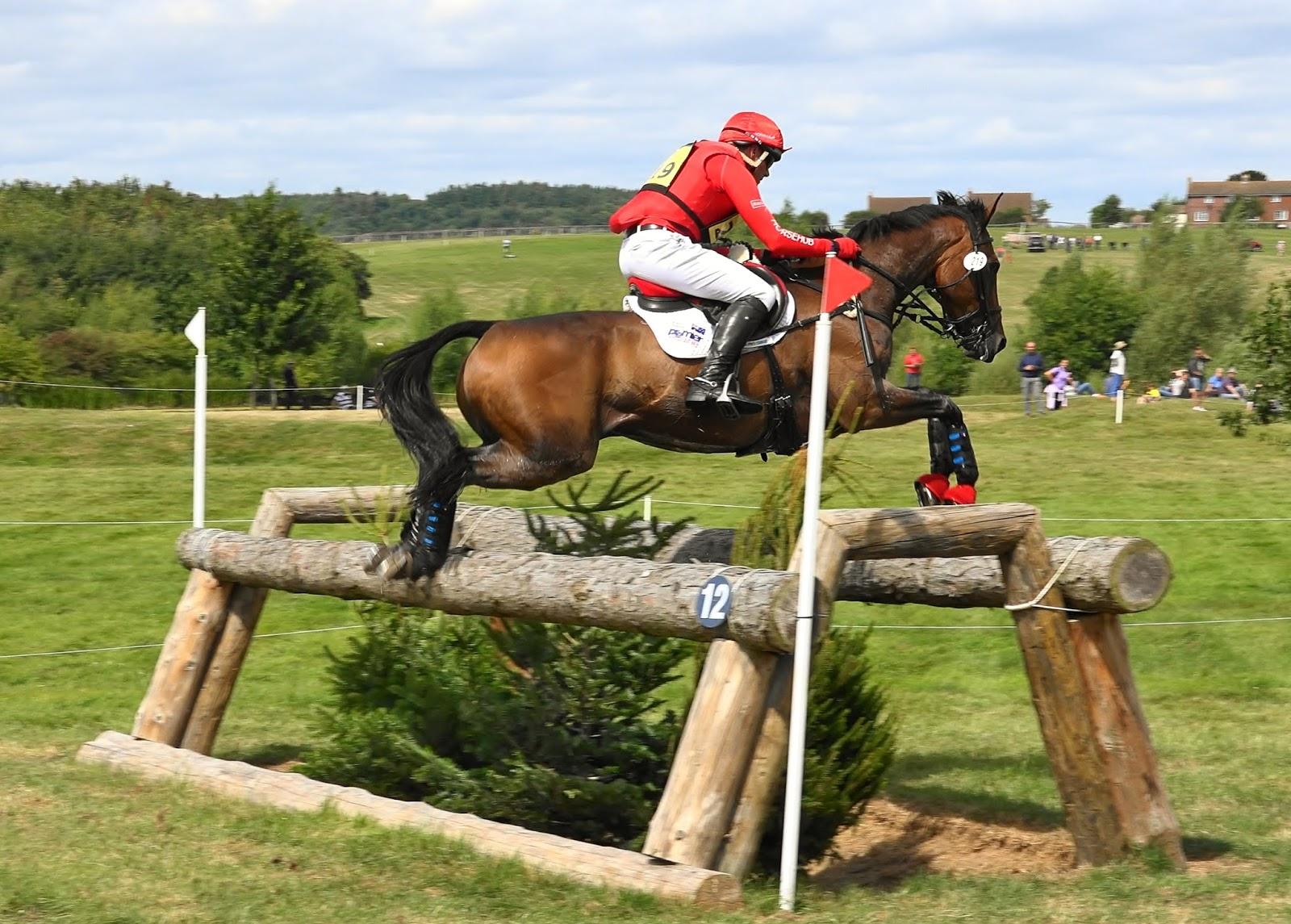 Harveywetdog Naf 5 Star International Hartpury Horse