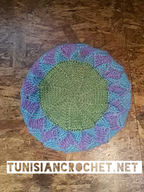Tutorial: How to Crochet Short Row Circle in Tunisian Crochet