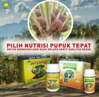 Supernasa dan Power Nutrition Pupuk Khusus Kelapa Sawit