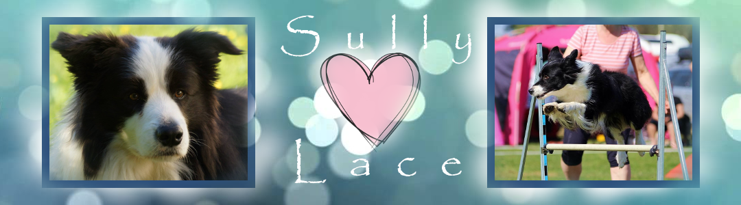 Sully and Lace