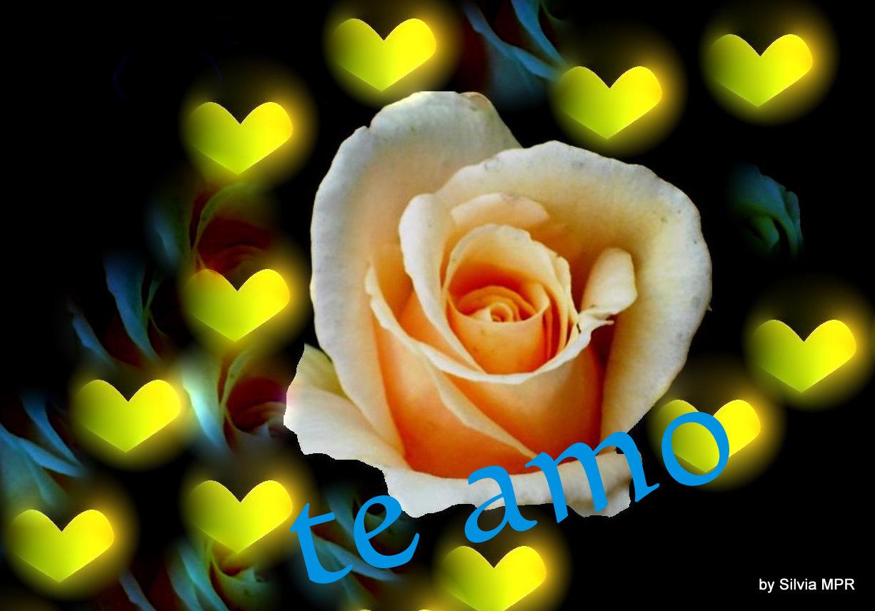 Imagenes De Amor Con Efectos: Para Dedicar A Una Mujer Especial: Agosto 2011