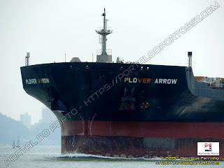 Plover Arrow