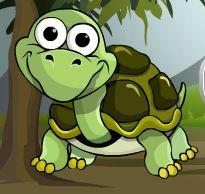 GamesZone15 Escape The Tortoise