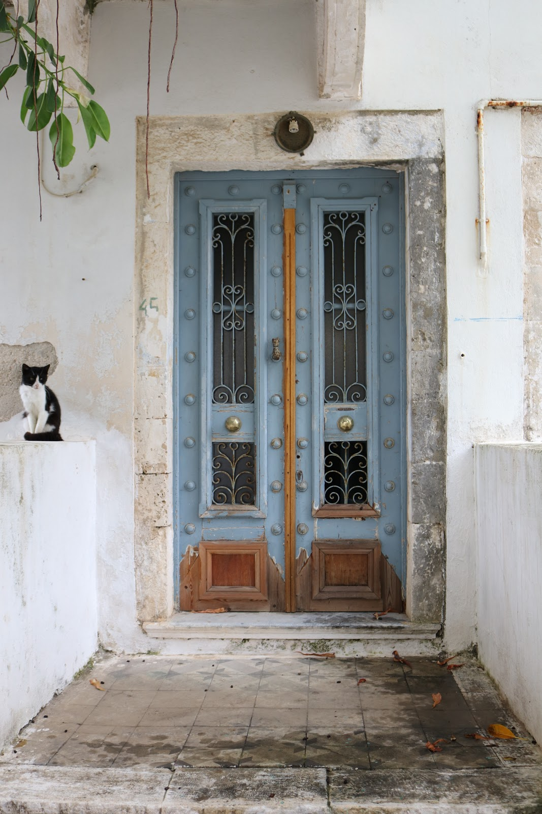 Cat sitting next to blue door with white walls, Kefalonia