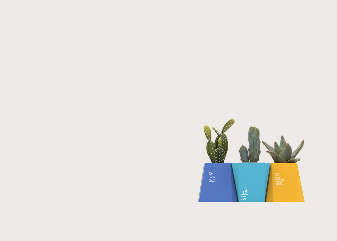 Colecti Cacti On Packaging Of The World Creative Package Design