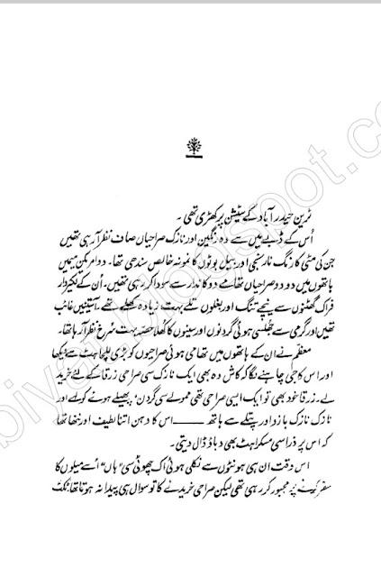 Aik Din Urdu Novel By Bano Qudsia | Free Download in Pdf