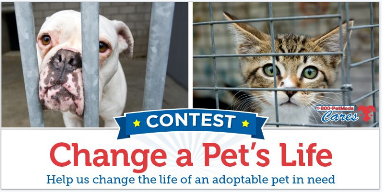 Change a Pet's Life Contest logo