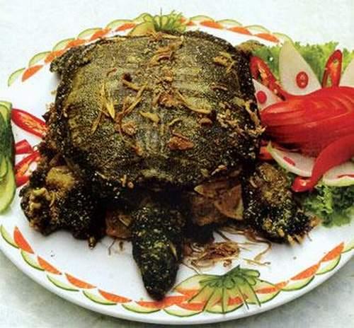 Các món ăn từ rùa có tốt không?